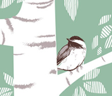Birch Birds © Michelle Schwartzbauer Design, LLC